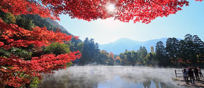 大分県由布市にある湯布院温泉の紅葉