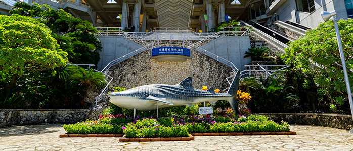 美ら海水族館の正面入口