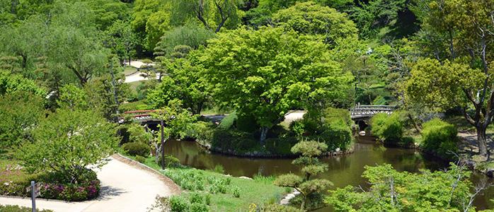 緑が映える水戸市の偕楽園の様子